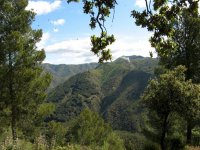 Activities in the countryside in Malaga and surroundings