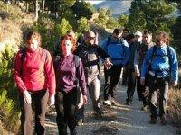Group of walkers