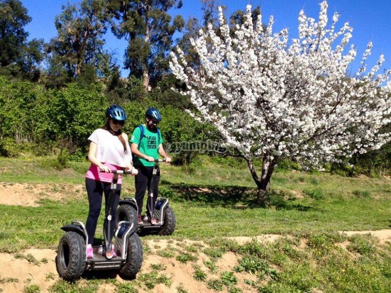 1h Segway Tour for Couples in Arenys de Munt