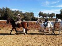Con los caballos en la pista de arena exterior