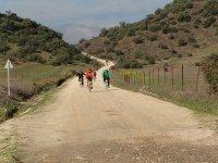 Por el camino de bicicletas