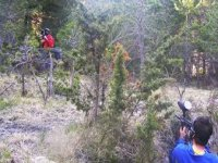 Paritda de paintball en pleno bosque