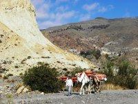 Ruta por Sierra Alhamilla