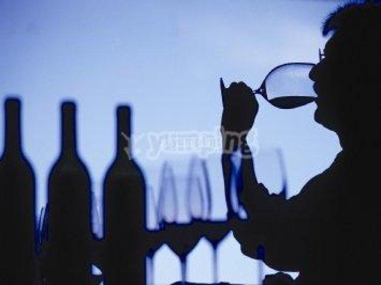 Aprende a ser un catador de vinos