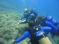 Tres buceadores bajo el agua