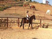 Outdoor riding class