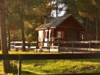 casas rurales en el bosque