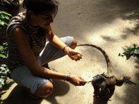 dando de comer a los reptiles
