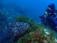 Foto submarina