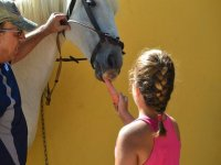 Nina dando de comer a un caballo