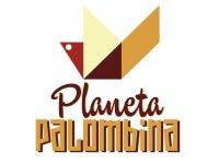 Planeta Palombina Paddle Surf