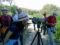 Observando por el telescopio