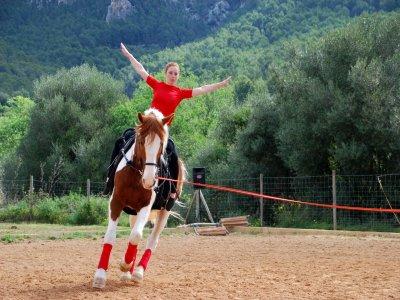 KV Equipo Ecuestre Clases de Equitación