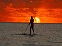 SUP桨桨练习冲浪桨冲浪组