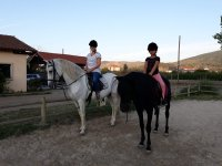 Girls uploaded to the Galician horses
