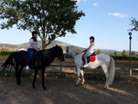 Two of the horses of the center of Queizas