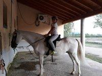 A lomos del caballo blanco
