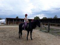 Manteniendo la postura en el equino negro