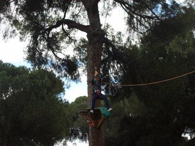 Parque en las alturas tarifa adulto