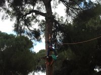 Adventure Park, Sevilla, Adult ticket.