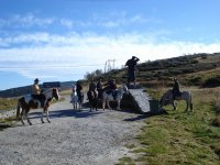 Excursions for groups