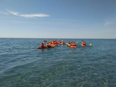 Medusa ADN Kayaks