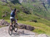 享受骑自行车的一天