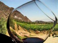 Disfruta este vino en un entorno incomparable