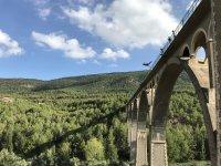 Bellissimo ambiente del ponte