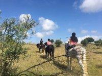 Saliendo de ruta con los caballos