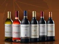 Taste our wines