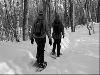 Enjoy snowshoeing