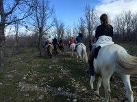A caballo por los bosques de Guadarrama