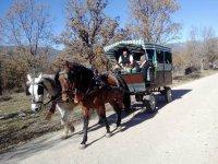 Carro de caballos en Guadarrama