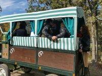 Carro tirado por caballos en Guadarrama