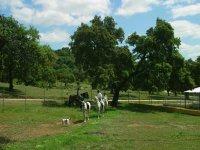 routes on horseback