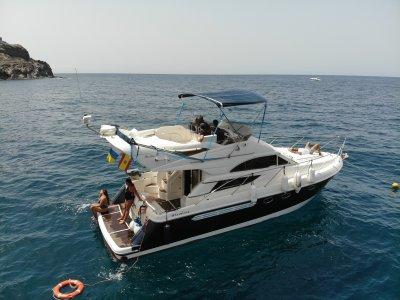 Mogán Sailing Tours Paseos en Barco