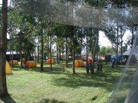 parque de aventura de arboles