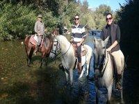 En el agua con los caballos