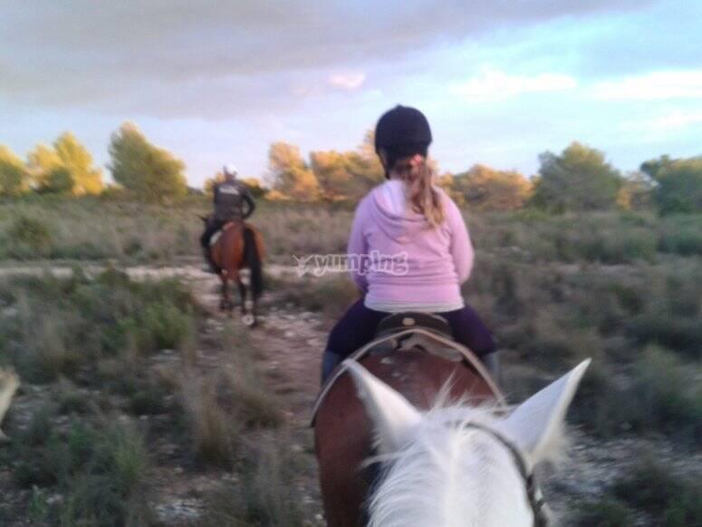 Make a horse riding excursion