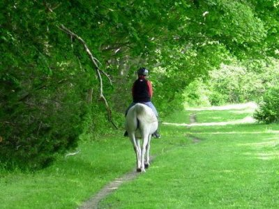1 h. de ruta a caballo en La Portera