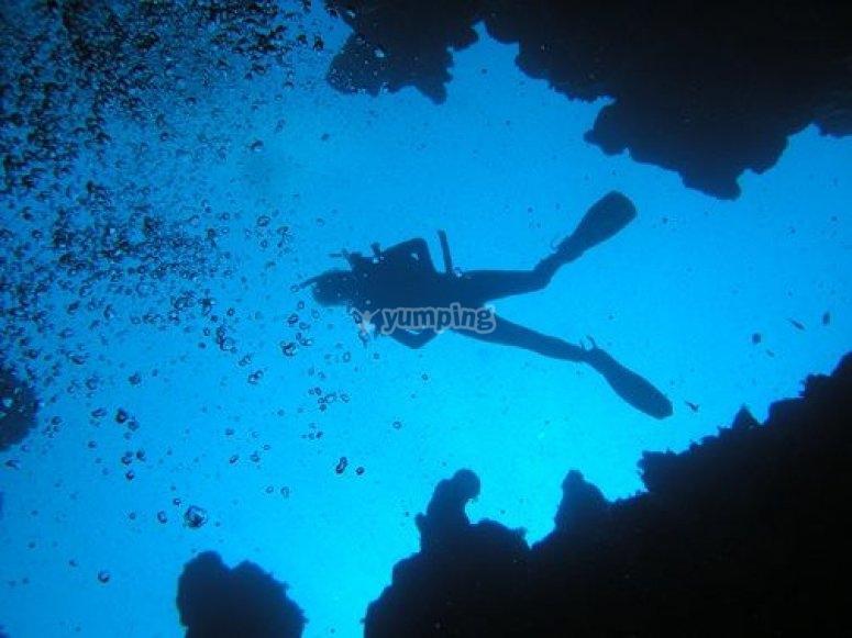 Aleteando en el fondo del mar