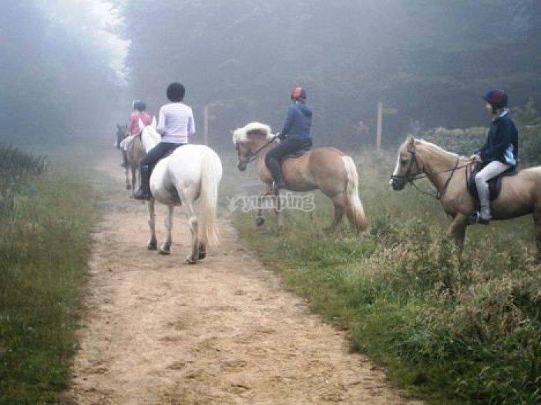 Realiza una ruta a caballo
