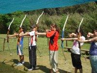 Row of bows