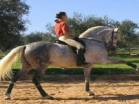 ¿Te apetece una ruta a caballo?