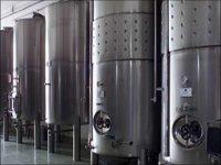 Prcoes de elaboracion del vino