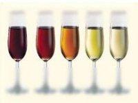 Disfruta de nuestros distintos vinos