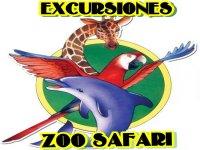 Zoo Safari Fauna Aventura Parques Infantiles