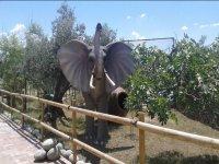 Gran figura de un elefante