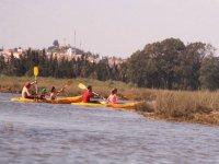 双座皮艇之旅独木舟和皮划艇桨冲浪